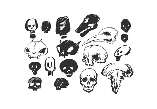 Hand drawn vector abstract artistic freehand textured ink Halloween design elements animals and human skulls collection set isolated on white background.
