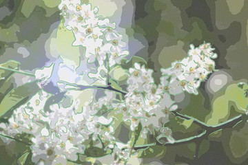 Bird cherry branches with white flowers