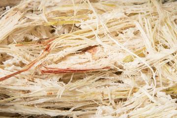 Waste of sugarcane - Saccharum officinarum