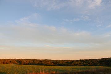 Fall Treeline, Catskills