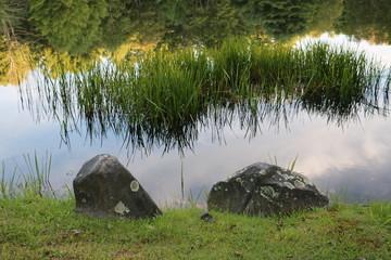 Pond, Rocks, Reeds