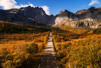 Wall Mural - Scenic road on Lofoten islands in Norway on a sunny autumn day