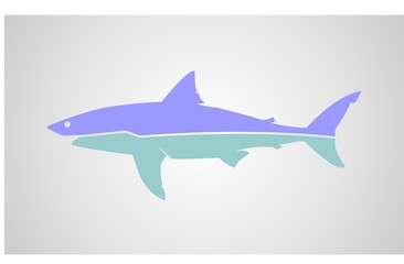 shark with two color vector.