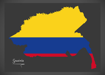 Guainia map of Colombia with Colombian national flag illustration
