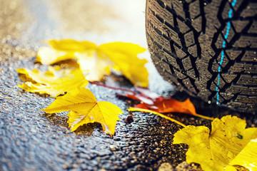 Rutschgefahr im Herbst bei regennasser Fahrbahn und Laub