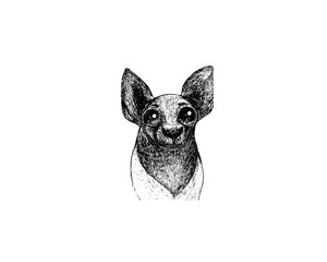 drawing illustration of that terrier breed dog cartoon pencil and charcoal on paper art and pastel black sketch on white background
