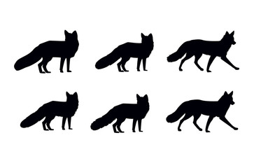fox shape