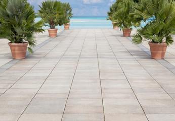 Seepromenade mit Palmen