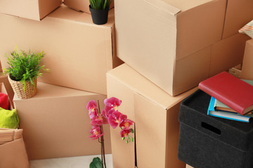 Many moving boxes in room