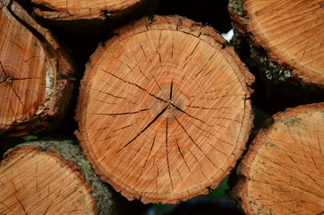 Cut and stacked firewood logs - Natural wooden Background