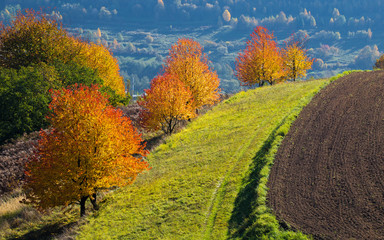 Hrinova autumn beautiful Slovakia landscape traditional agriculture farming
