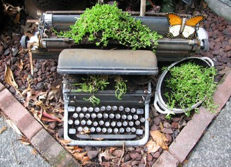 Fotorollo Schmetterlinge im Grunge Upcycled typewriter planter