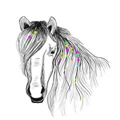 Bohemian Horse drawing