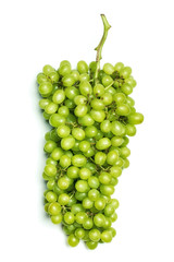 Green ripe grapes.