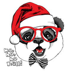 Panda portrait in glasses and with a red Santas hat. Vector illustration.