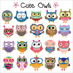 Aluminium Prints Owls cartoon Set of Cute Cartoon Owls