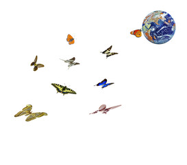 Butterfly flying to planet Earth.Elements of this image furnished by NASA