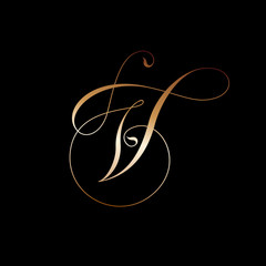 V monogram. Curl, monogram. Beautiful golden curl as letter V.
