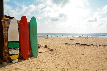 Surfboards at Praia do Amado, Beach and Surfer spot, Algarve Portugal
