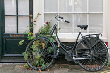 bicycle and flowers on housefront