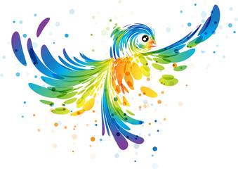 Splash colorful fantasy bird