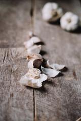 Garlic in many ways
