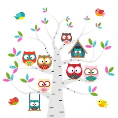 Vector set of colorful owls and birds on the tree on a white background