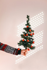 Male hand holding a christmas tree - vertical