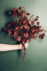 Hand holding a bouquet of red eucalyptus
