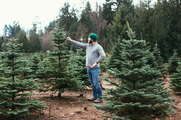 Bearded Man Wearing Green Beanie And Wool Sweater Inspecting Christmas Tree