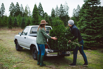 Attractive young couple at christmas tree farm in the winter.