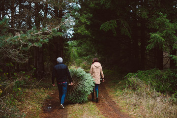 Young couple carrying Christmas tree they cut down through the woods