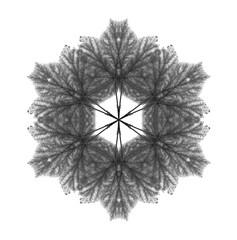 Snowflake - Leaf