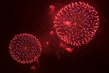Abstract colored firework at dark night sky