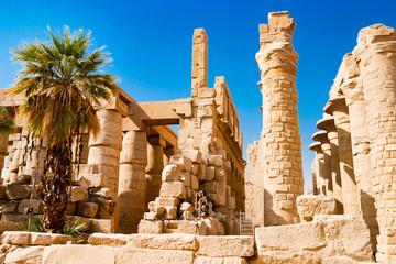 Palm tree near egyptian columns in Luxor, Egypt