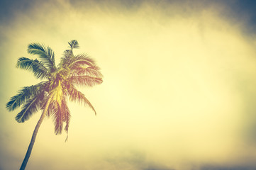 Coconut palm tree under sunset sky in the evening with copy space. Vintage tone.