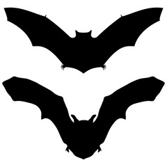 Bat silhouette on white background for Halloween