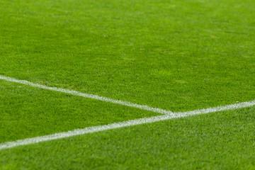 Soccer field white line.