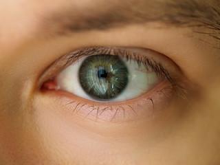 Male left emerald green coloured eye