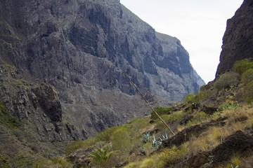 Пешая тропа в ущелье Маска на Тенерифе
