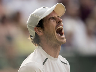 Tennis: Wimbledon  Murray vs Tsonga