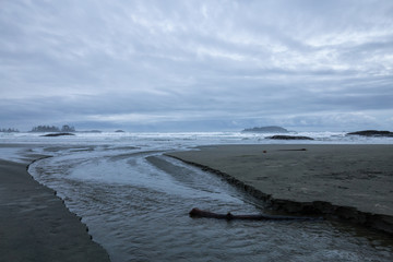 Beautiful moody view on the sandy beach on the Pacific West Coast during a cloudy early morning. Taken in Tofino, Vancouver Island, British Columbia, Canada.