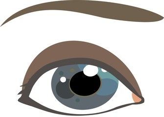 Human eye illustration