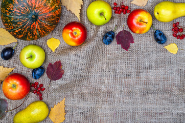 Thanksgiving background: pumpkin, apples and berries with copy space.