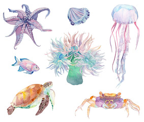 Watercolor marine illustration set - coral, fish, crab, turtle and octopus