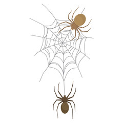 Spider on the web, colorful scary Halloween illustration. Vector