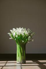 Callas flower