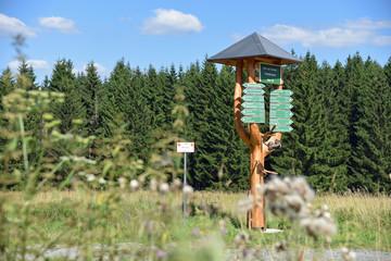 Wanderwegweiser im Thüringer Wald