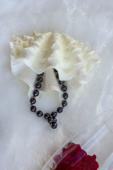 figured white bivalve shell casket and bracelet of black pearls on white fur