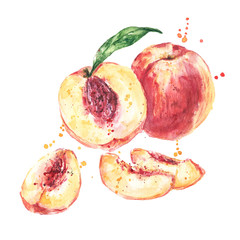 Watercolor peaches fruit, peach slices. Hand painted peaches